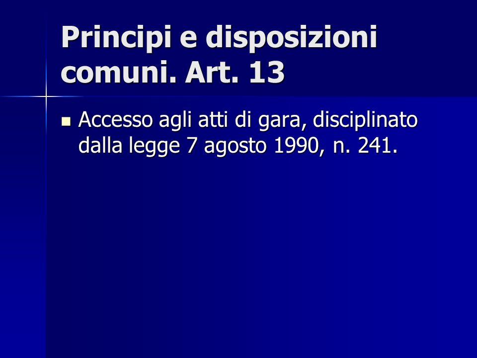 Principi e disposizioni comuni. Art. 13