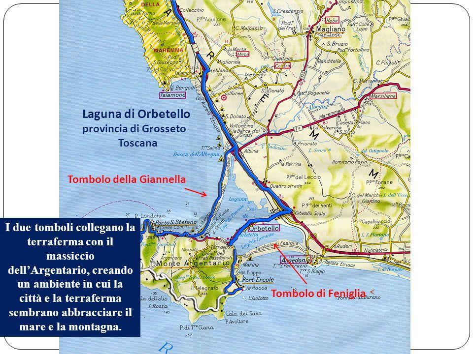 Laguna di Orbetello provincia di Grosseto Toscana