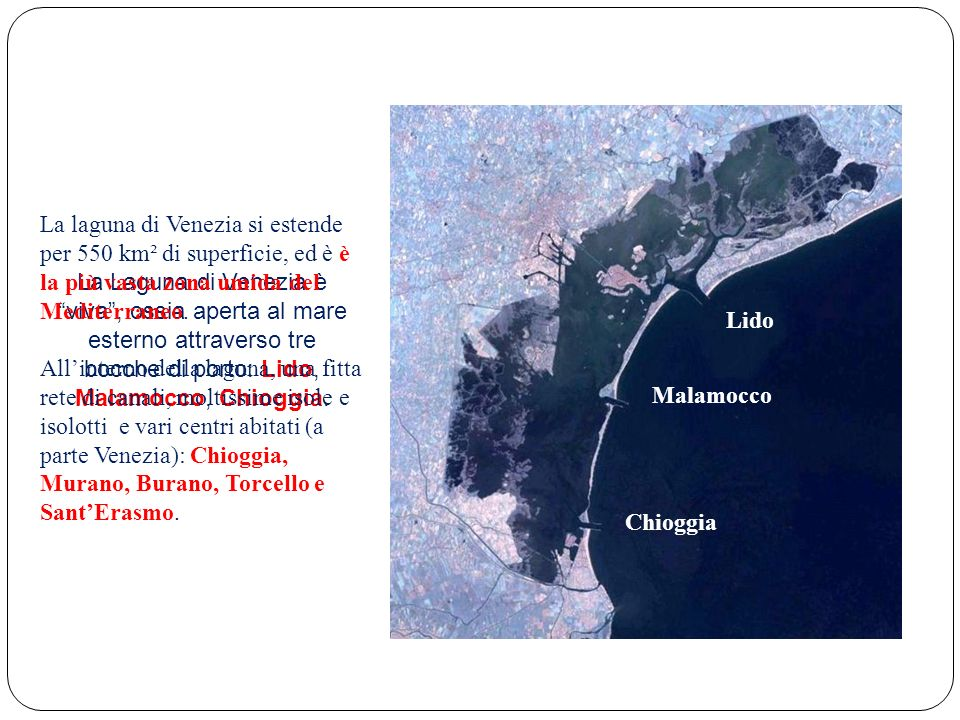 La laguna di Venezia si estende per 550 km² di superficie, ed è è la più vasta zona umida del Mediterraneo.