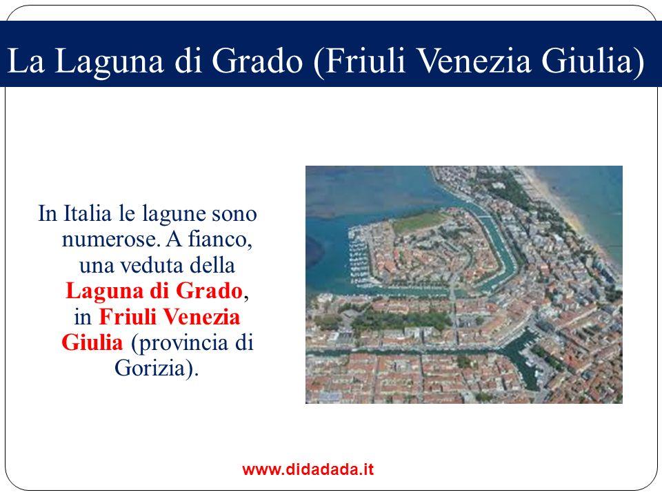 La Laguna di Grado (Friuli Venezia Giulia)