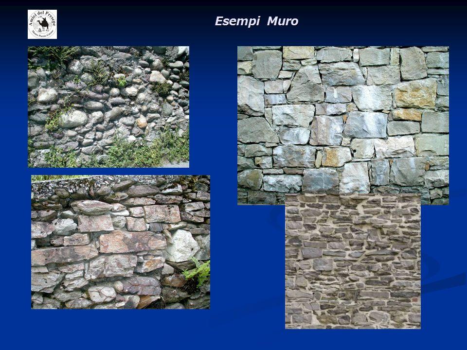 Esempi Muro