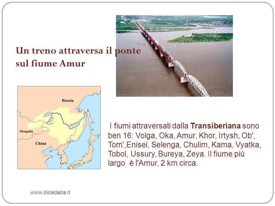 Un treno attraversa il ponte sul fiume Amur