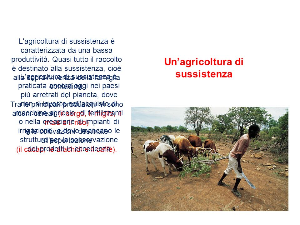 Un'agricoltura di sussistenza