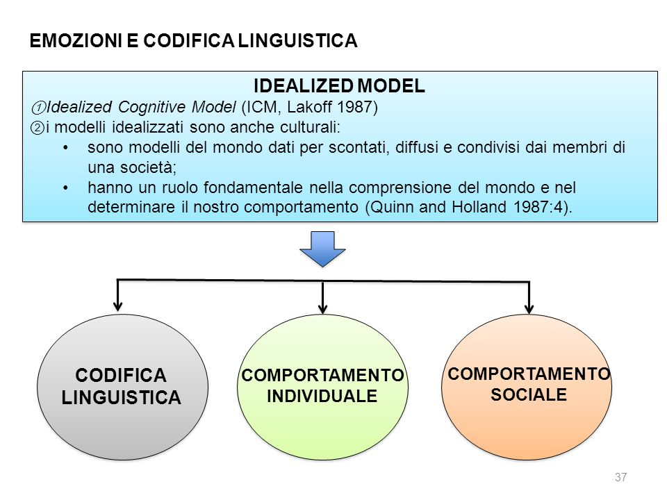 IDEALIZED MODEL CODIFICA LINGUISTICA