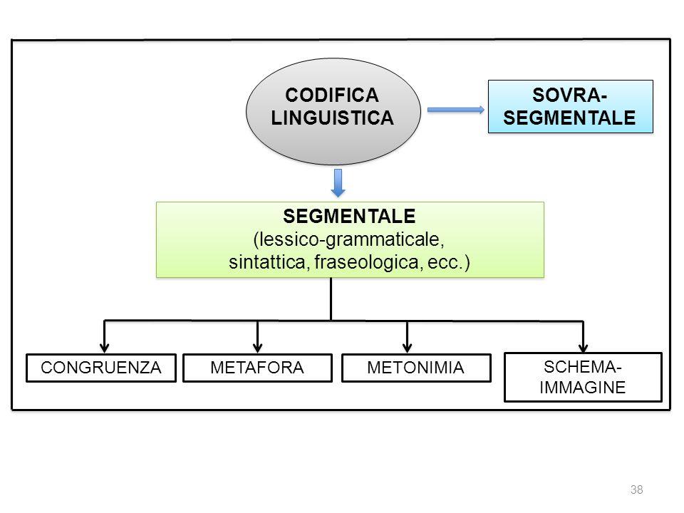 CODIFICA LINGUISTICA SOVRA- SEGMENTALE SEGMENTALE