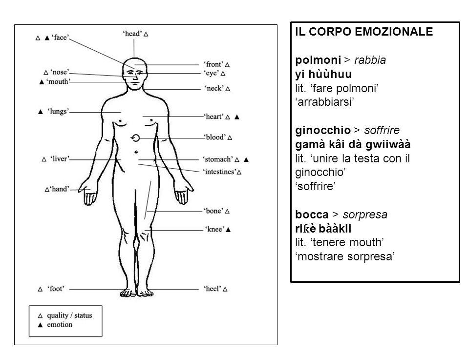 IL CORPO EMOZIONALE polmoni > rabbia. yi hùùhuu. lit. 'fare polmoni' 'arrabbiarsi' ginocchio > soffrire.
