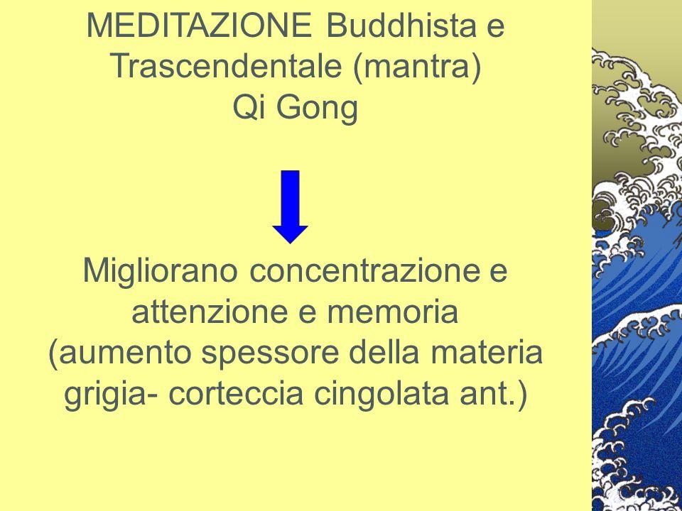 MEDITAZIONE Buddhista e Trascendentale (mantra) Qi Gong