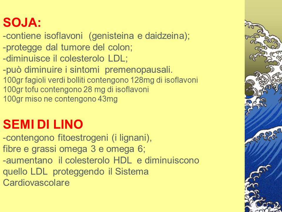 SOJA: SEMI DI LINO -contiene isoflavoni (genisteina e daidzeina);