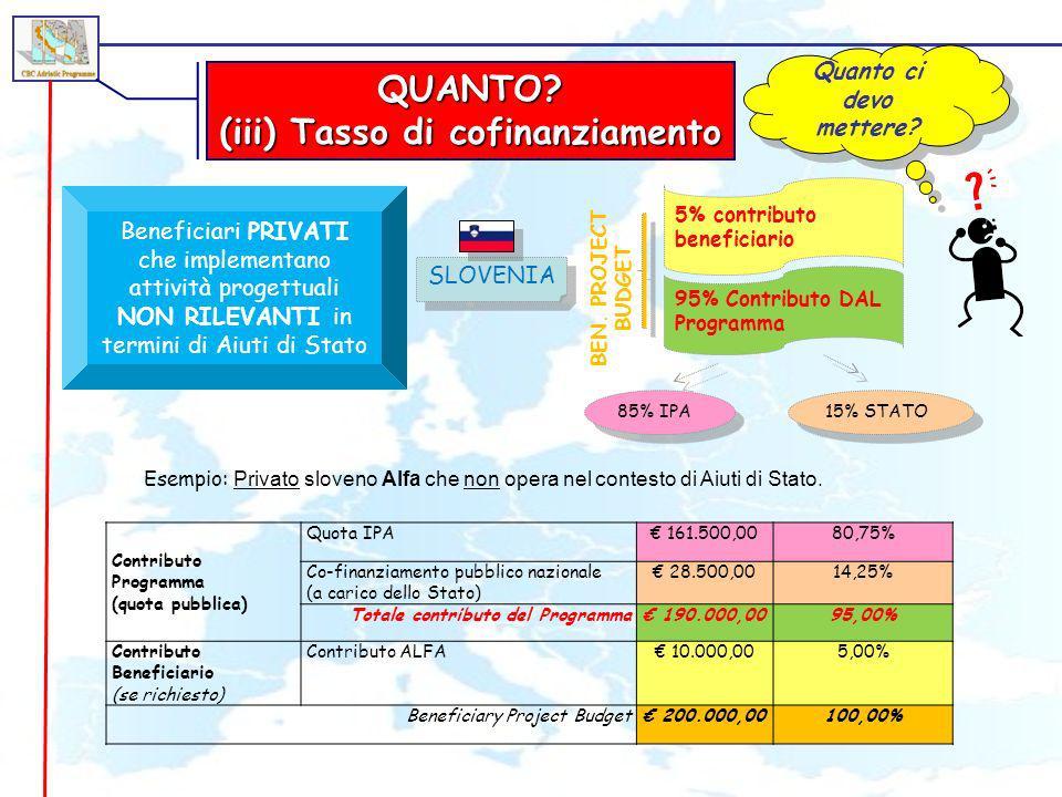 (iii) Tasso di cofinanziamento