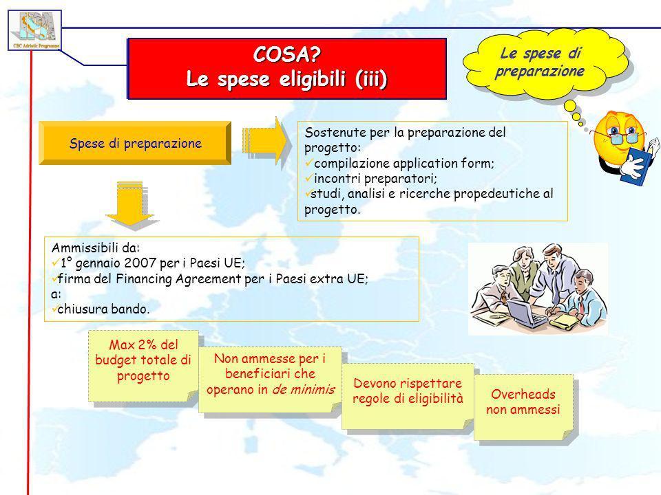 Le spese di preparazione Le spese eligibili (iii)