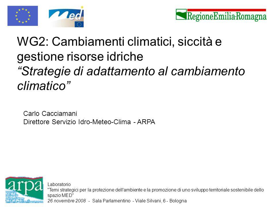 WG2: Cambiamenti climatici, siccità e gestione risorse idriche Strategie di adattamento al cambiamento climatico
