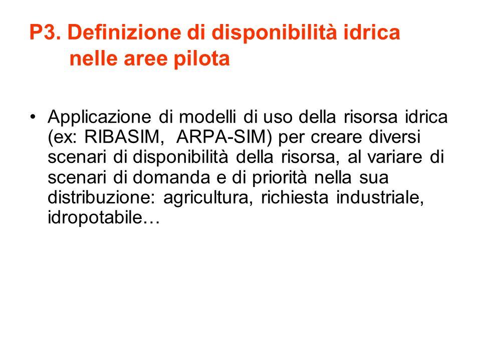 P3. Definizione di disponibilità idrica nelle aree pilota