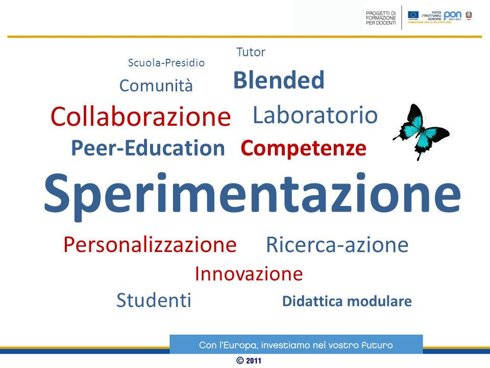 Sperimentazione Collaborazione Blended Laboratorio Peer-Education