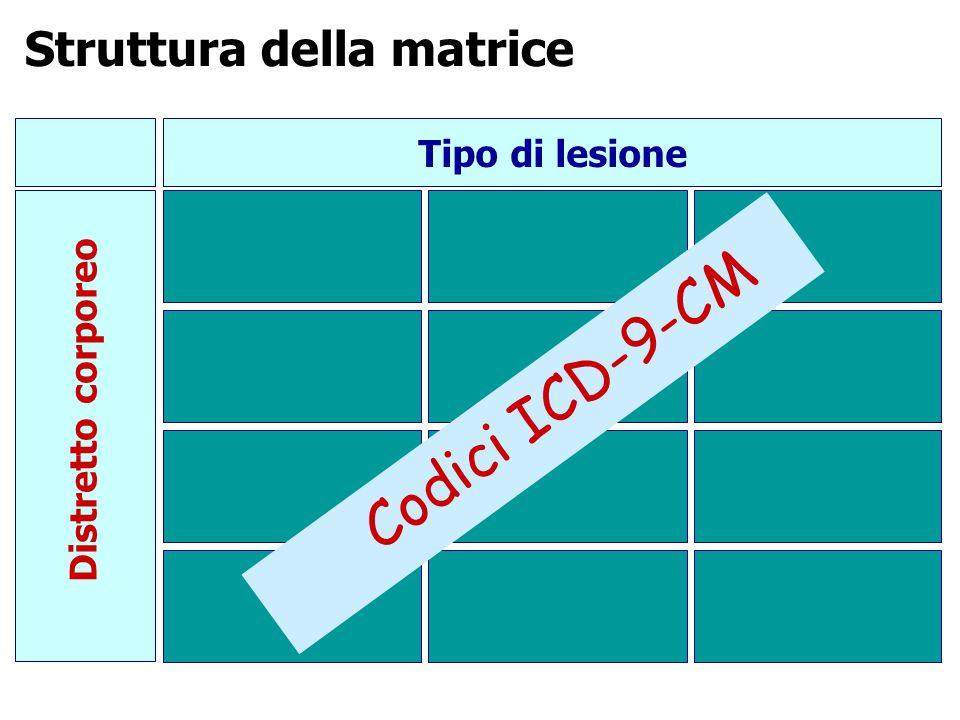 Codici ICD-9-CM Struttura della matrice Tipo di lesione