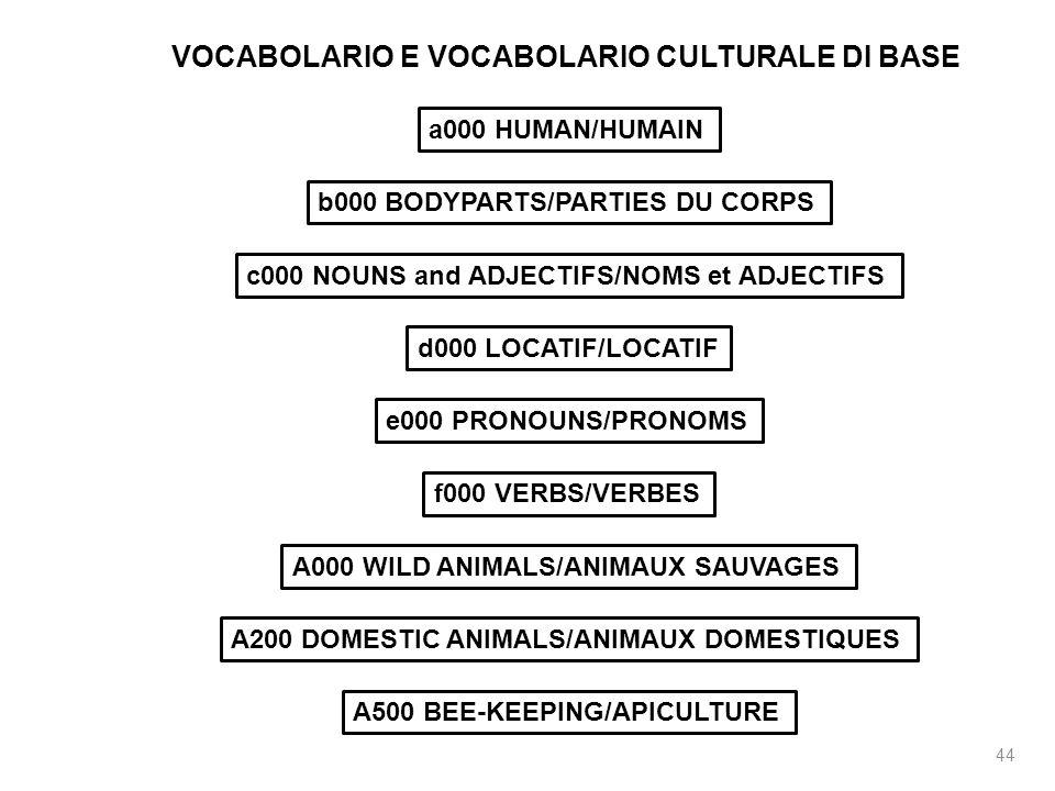 VOCABOLARIO E VOCABOLARIO CULTURALE DI BASE