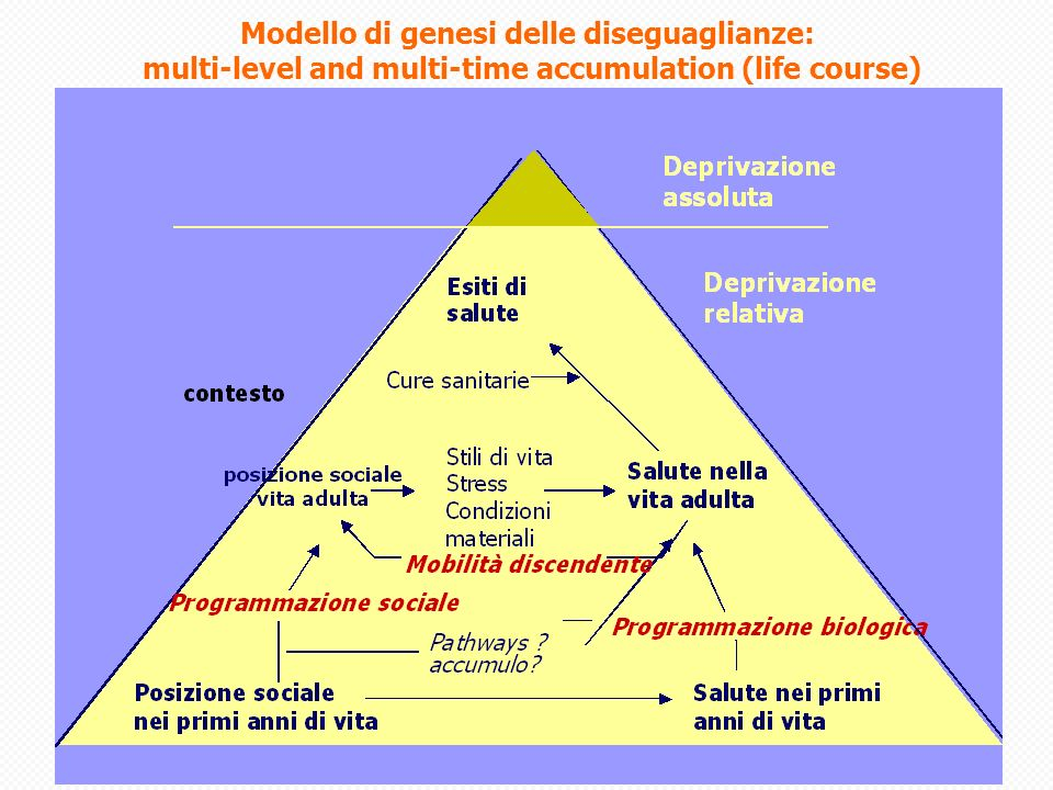 Modello di genesi delle diseguaglianze: multi-level and multi-time accumulation (life course)