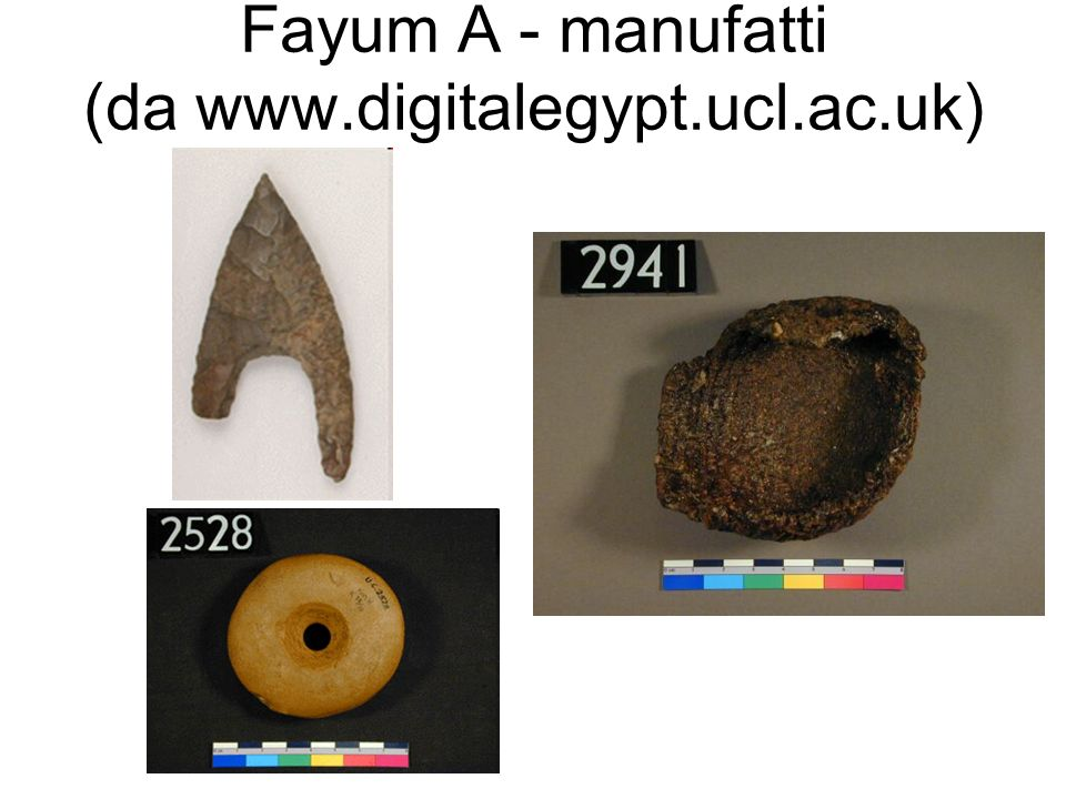 Fayum A - manufatti (da www.digitalegypt.ucl.ac.uk)