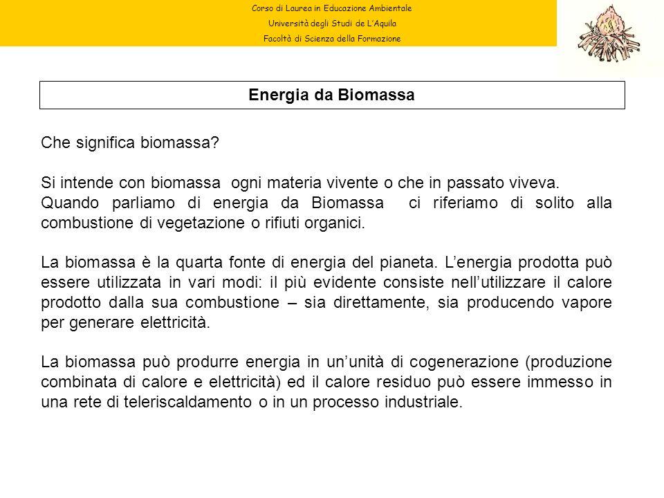 Che significa biomassa
