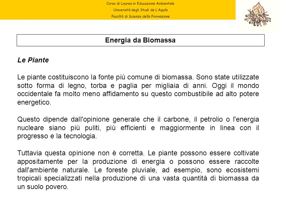 Energia da Biomassa Le Piante