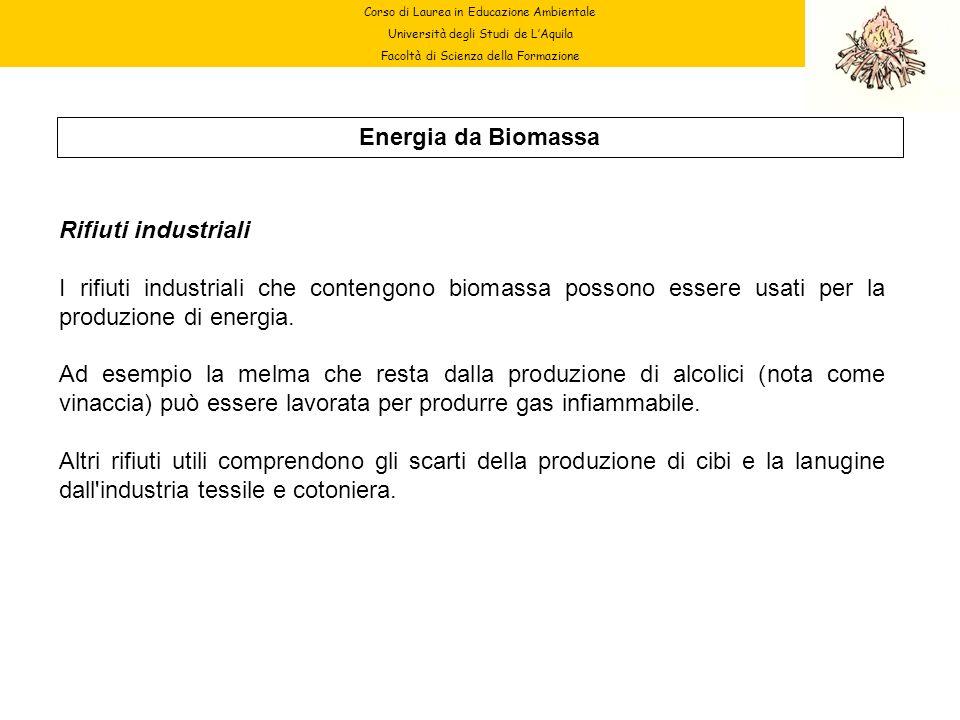 Energia da Biomassa Rifiuti industriali