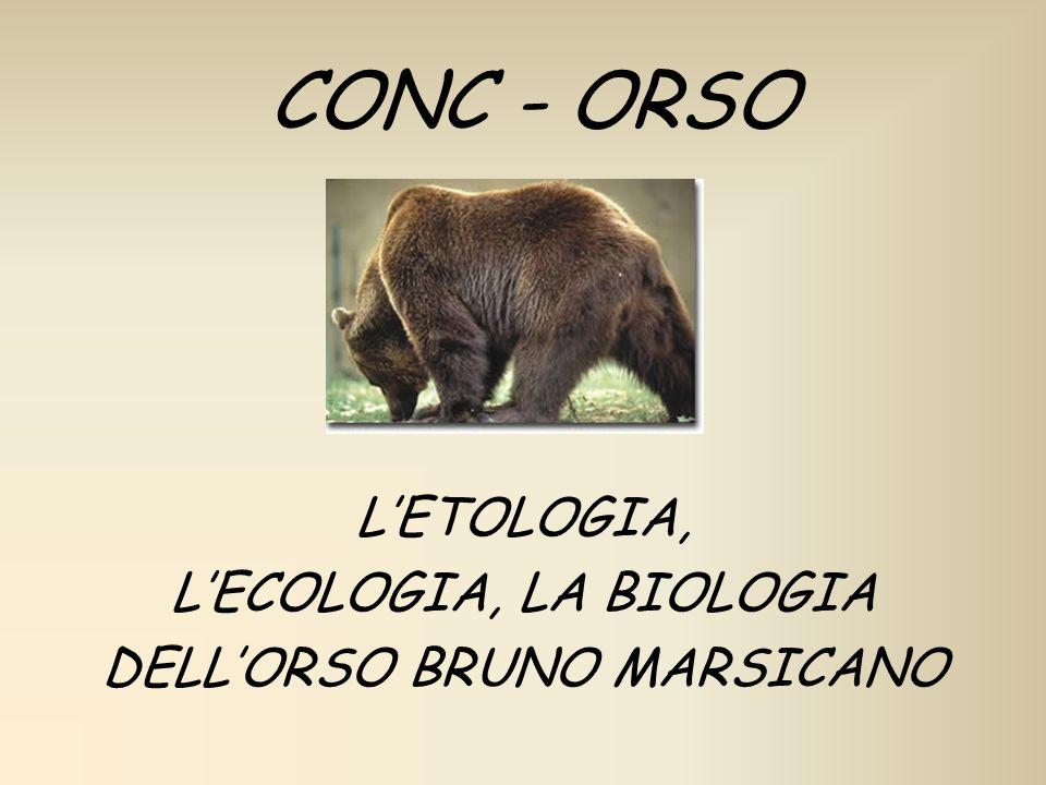 L'ETOLOGIA, L'ECOLOGIA, LA BIOLOGIA DELL'ORSO BRUNO MARSICANO
