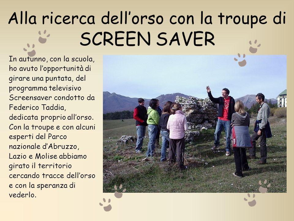 Alla ricerca dell'orso con la troupe di SCREEN SAVER