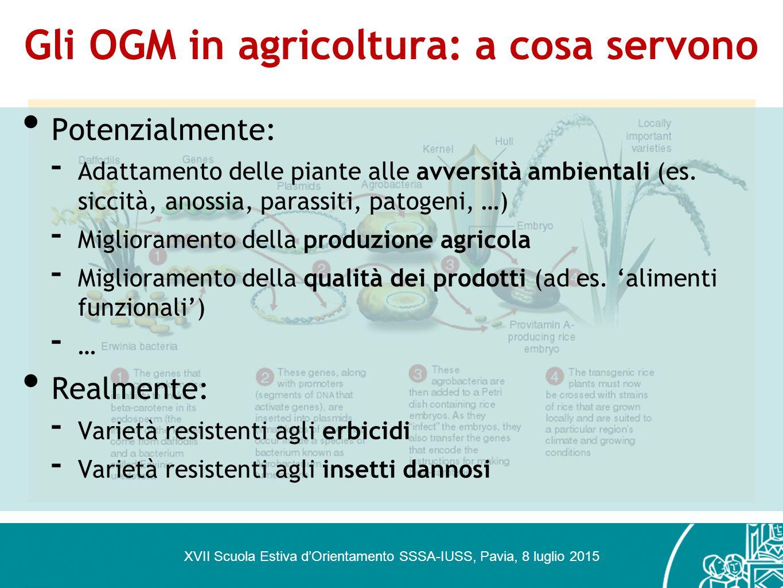 Gli OGM in agricoltura: a cosa servono