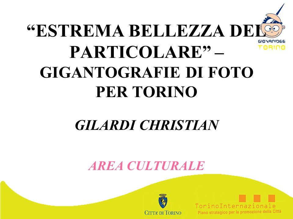 ESTREMA BELLEZZA DEL PARTICOLARE – GIGANTOGRAFIE DI FOTO PER TORINO