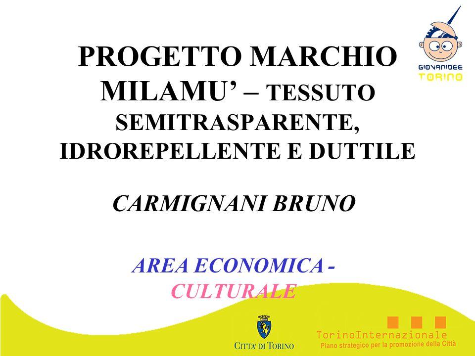 CARMIGNANI BRUNO AREA ECONOMICA - CULTURALE