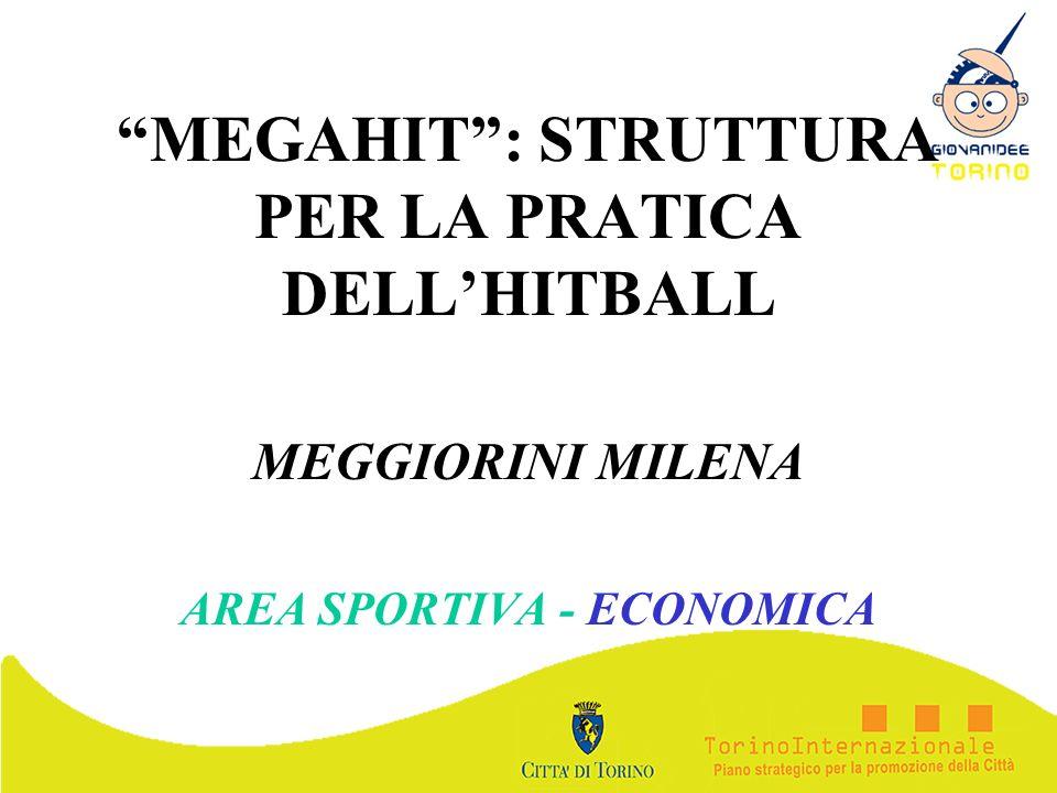 MEGAHIT : STRUTTURA PER LA PRATICA DELL'HITBALL