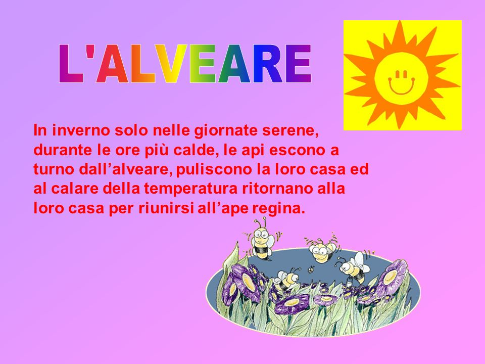 L ALVEARE