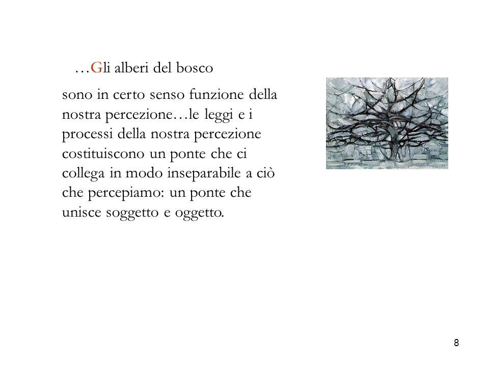 …Gli alberi del bosco