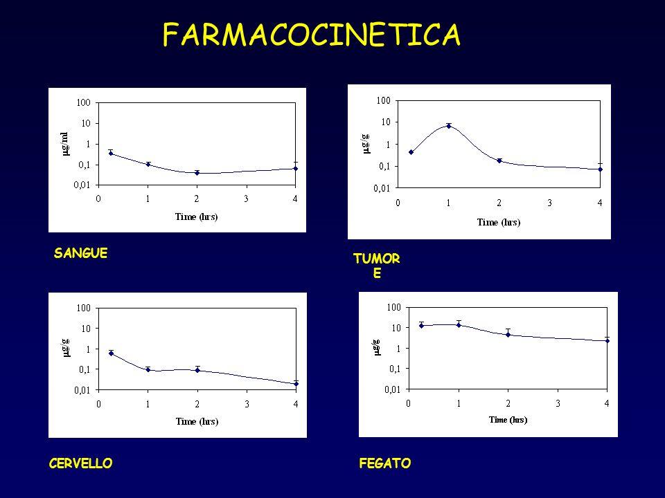 FARMACOCINETICA SANGUE TUMORE CERVELLO FEGATO