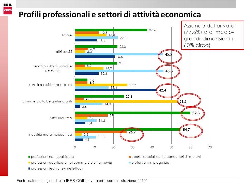 Profili professionali e settori di attività economica