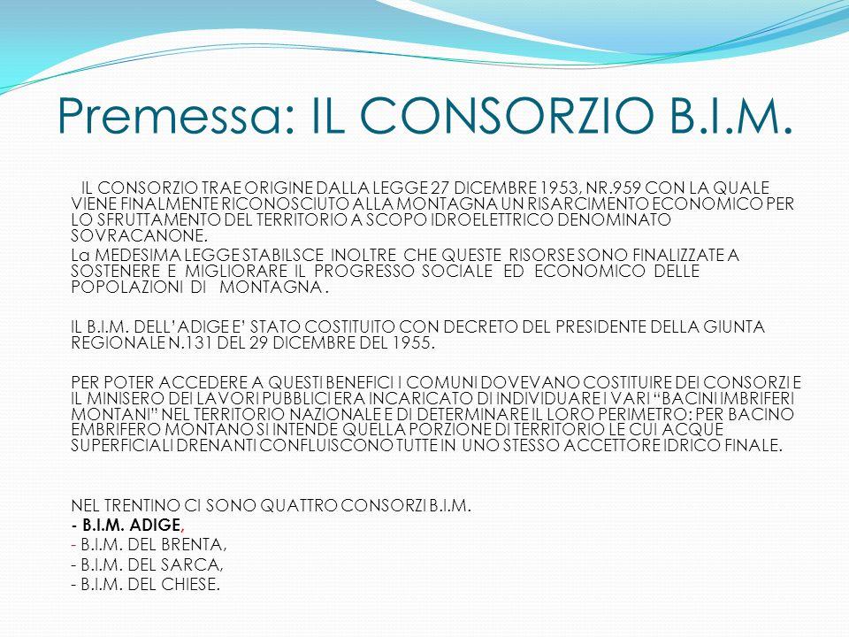 Premessa: IL CONSORZIO B.I.M.