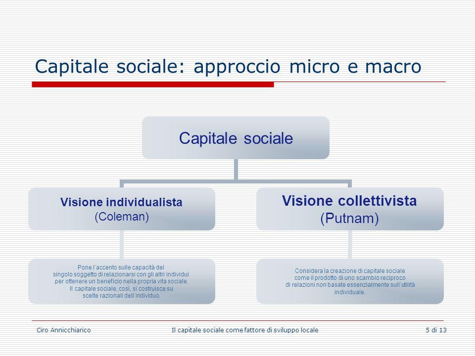 Capitale sociale: approccio micro e macro