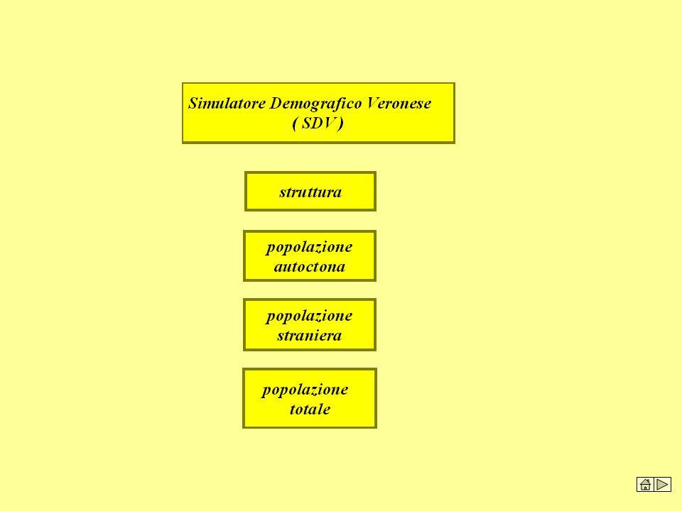Il Simulatore Demografico veronese, permette un'ampia serie di previsioni demografiche basate sulla obiettiva rappresentazione della struttura demografica territoriale in essere. La previsione, oltre a permettere di seguire l'evoluzione naturale della popolazione, ne rende possibile il dimensionamento per singolo anno con frontiera massima al 2057.