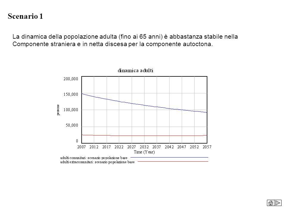 Scenario 1 La dinamica della popolazione adulta (fino ai 65 anni) è abbastanza stabile nella.
