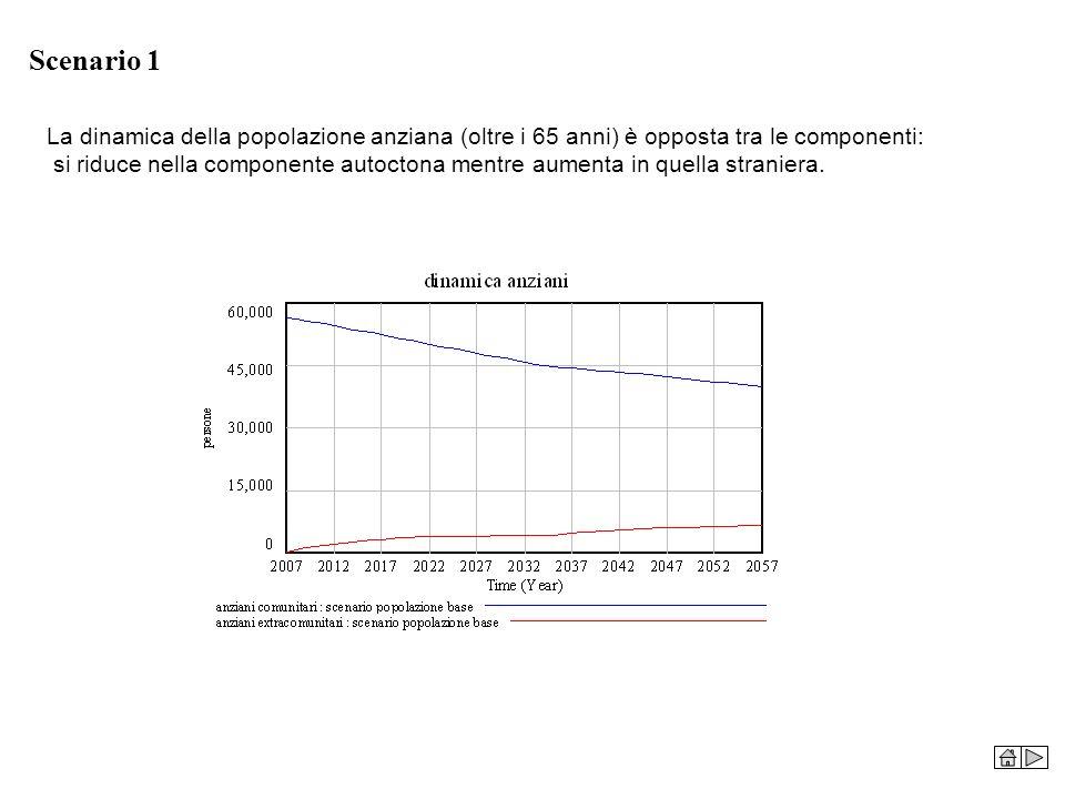 Scenario 1 La dinamica della popolazione anziana (oltre i 65 anni) è opposta tra le componenti: