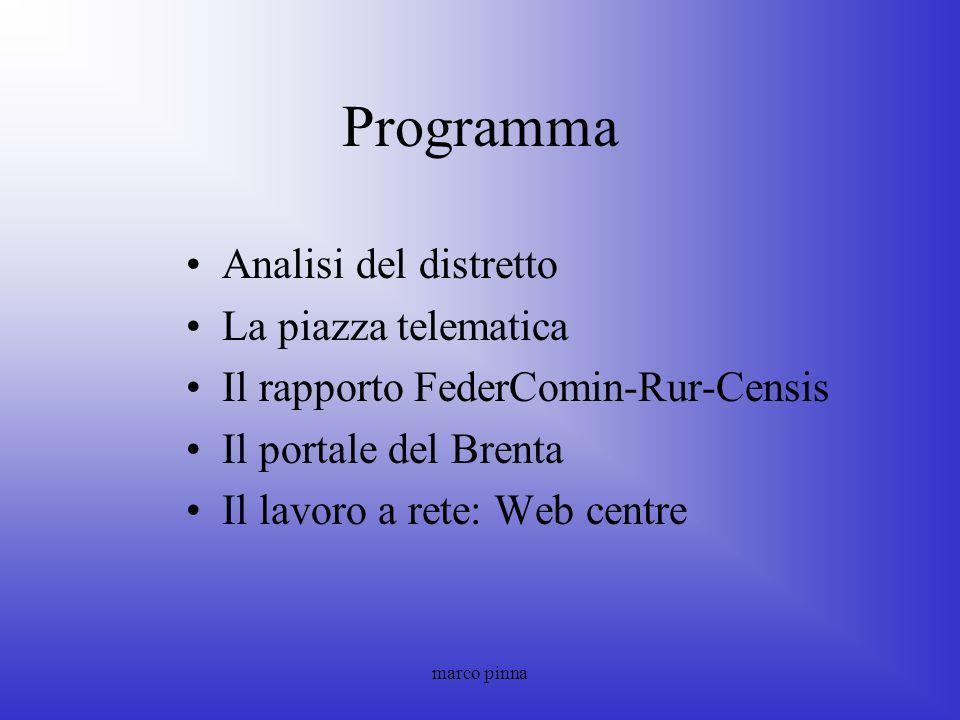 Programma Analisi del distretto La piazza telematica