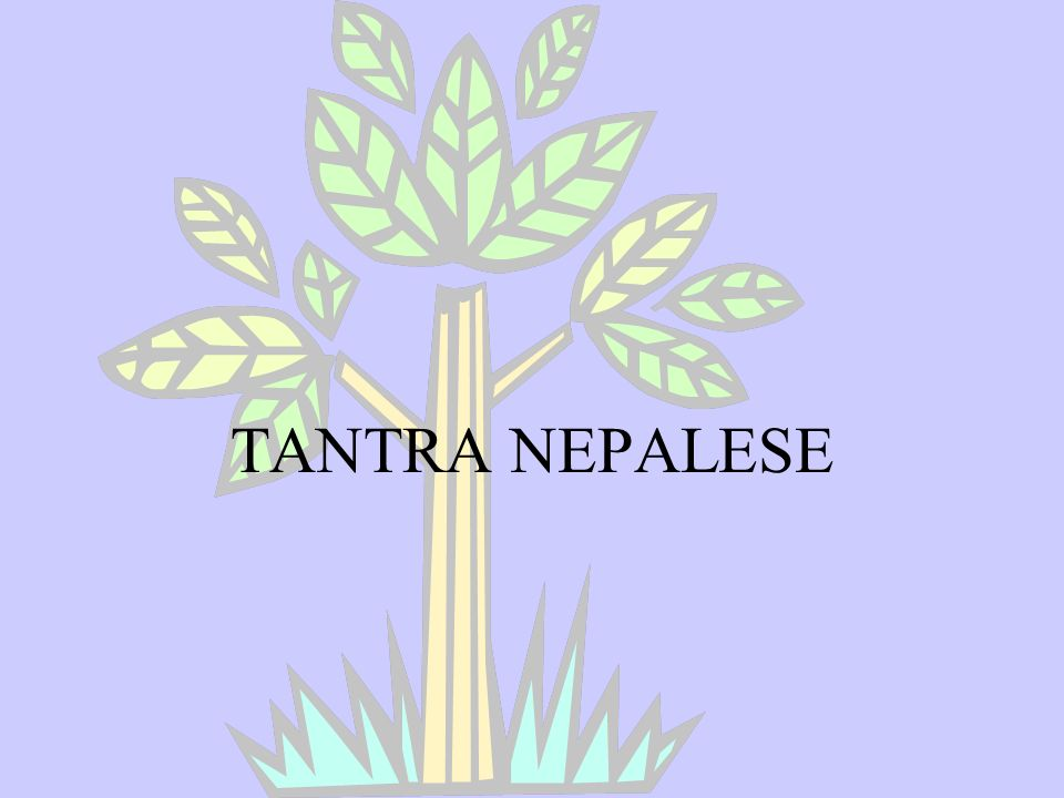 TANTRA NEPALESE
