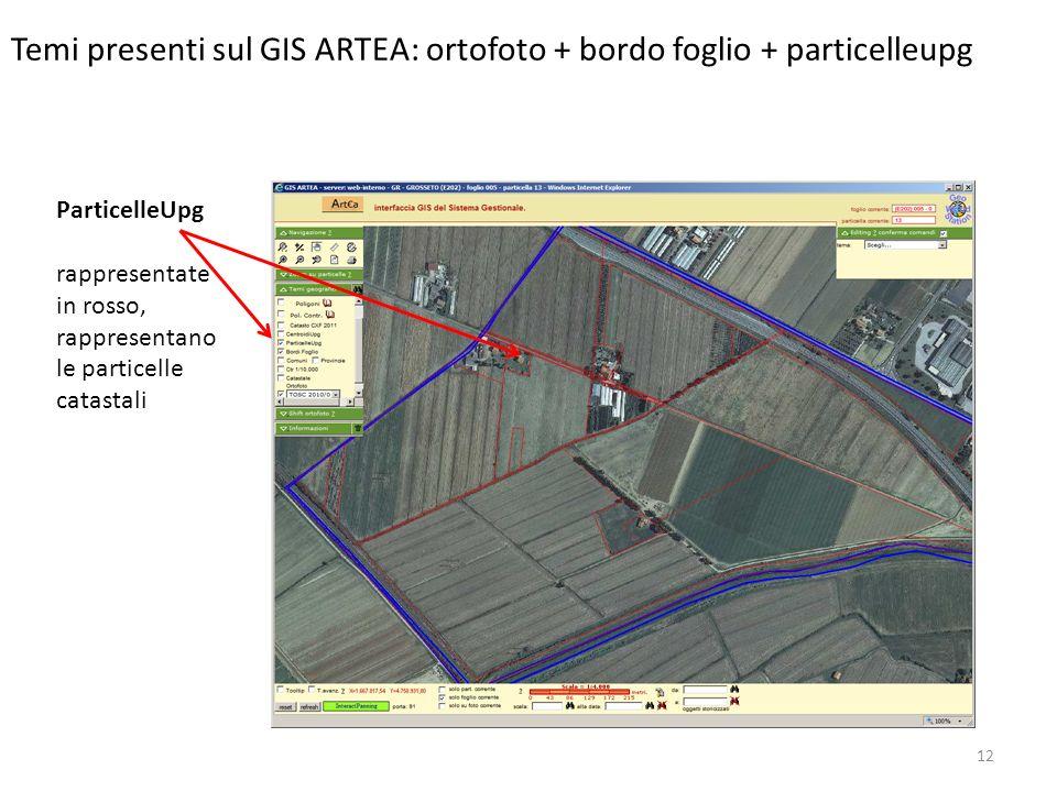 Temi presenti sul GIS ARTEA: ortofoto + bordo foglio + particelleupg