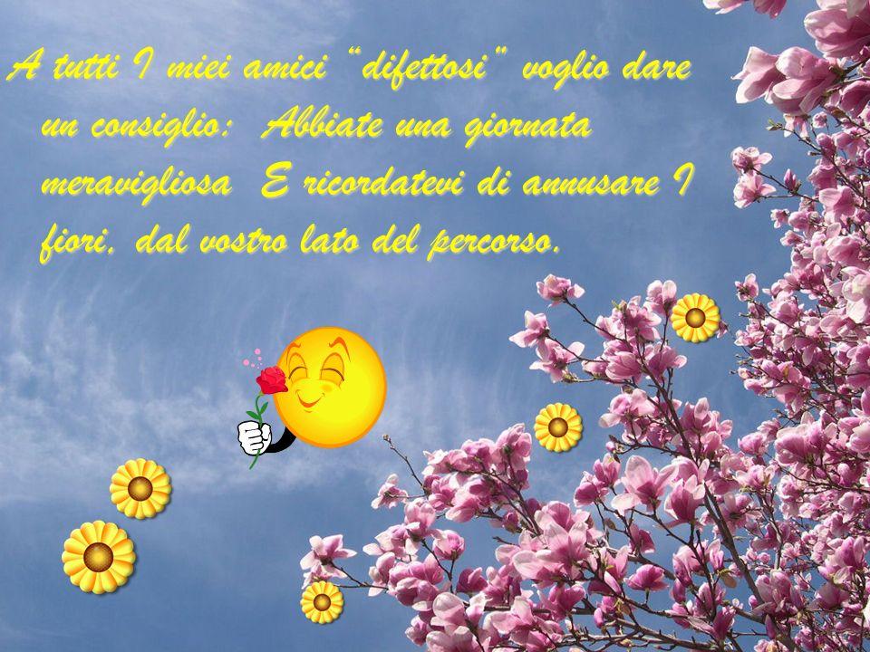 A tutti I miei amici difettosi voglio dare un consiglio: Abbiate una giornata meravigliosa E ricordatevi di annusare I fiori, dal vostro lato del percorso.