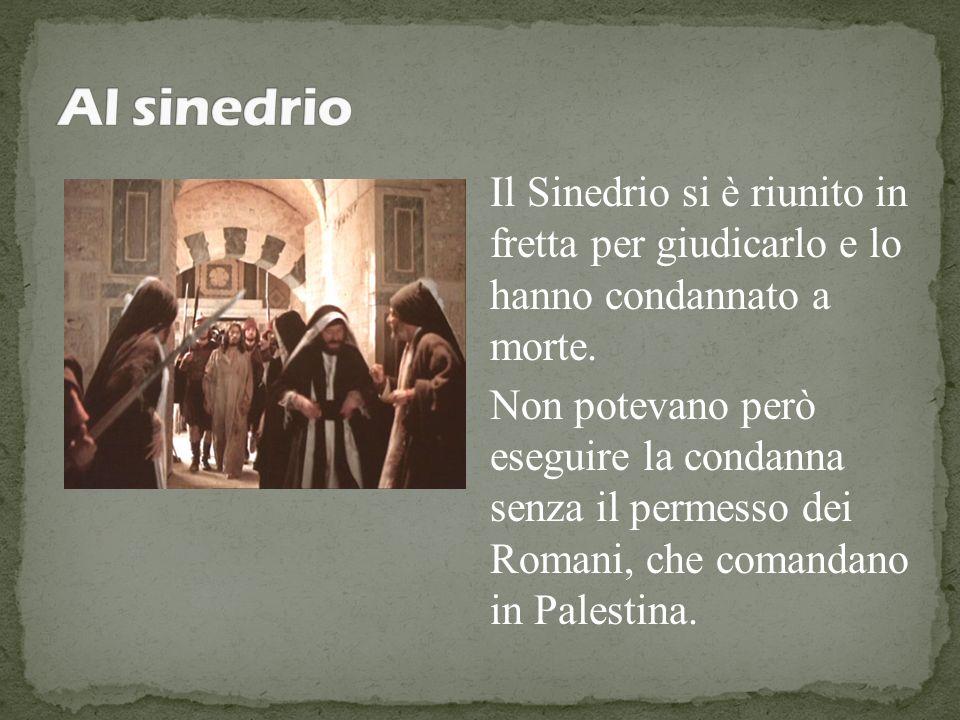 Al sinedrio