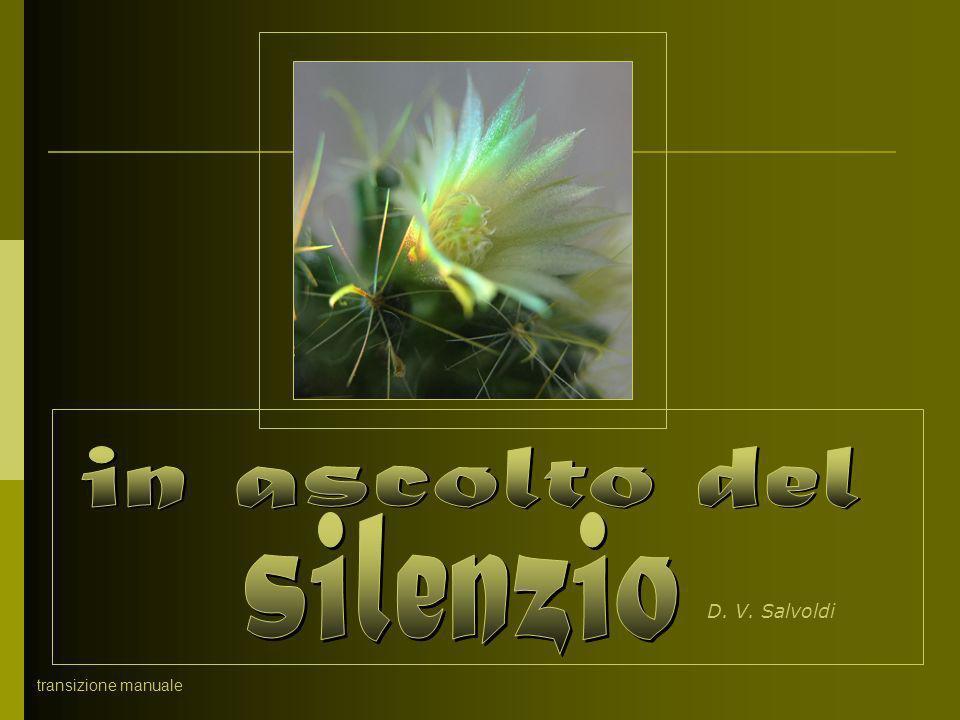 in ascolto del silenzio D. V. Salvoldi transizione manuale