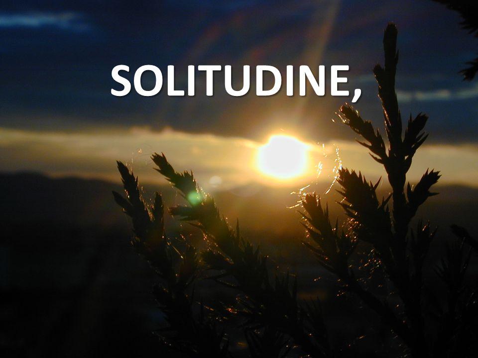 SOLITUDINE,
