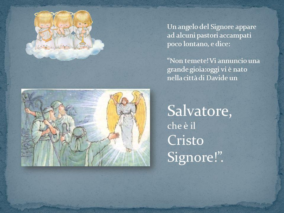Salvatore, Cristo Signore! . che è il