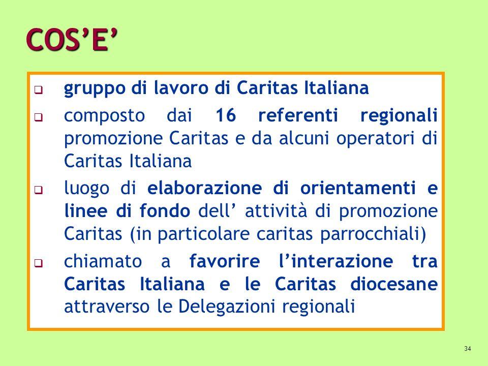 COS'E' gruppo di lavoro di Caritas Italiana