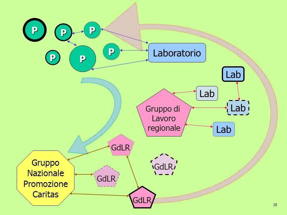 P P P P Laboratorio P P Lab Lab Lab Lab Gruppo Nazionale Promozione