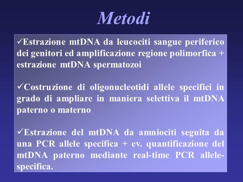 Metodi Estrazione mtDNA da leucociti sangue periferico dei genitori ed amplificazione regione polimorfica + estrazione mtDNA spermatozoi.